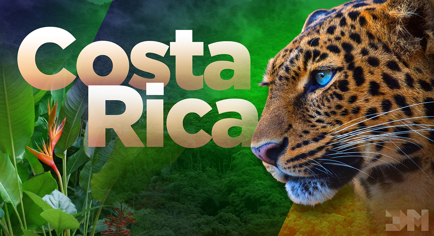 Costa Rica Flowers jaguar rainforest