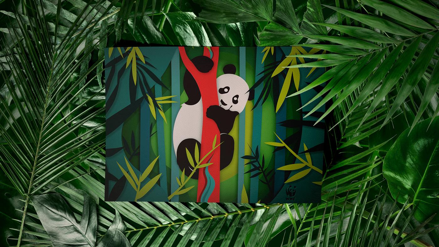WWF Polyedra