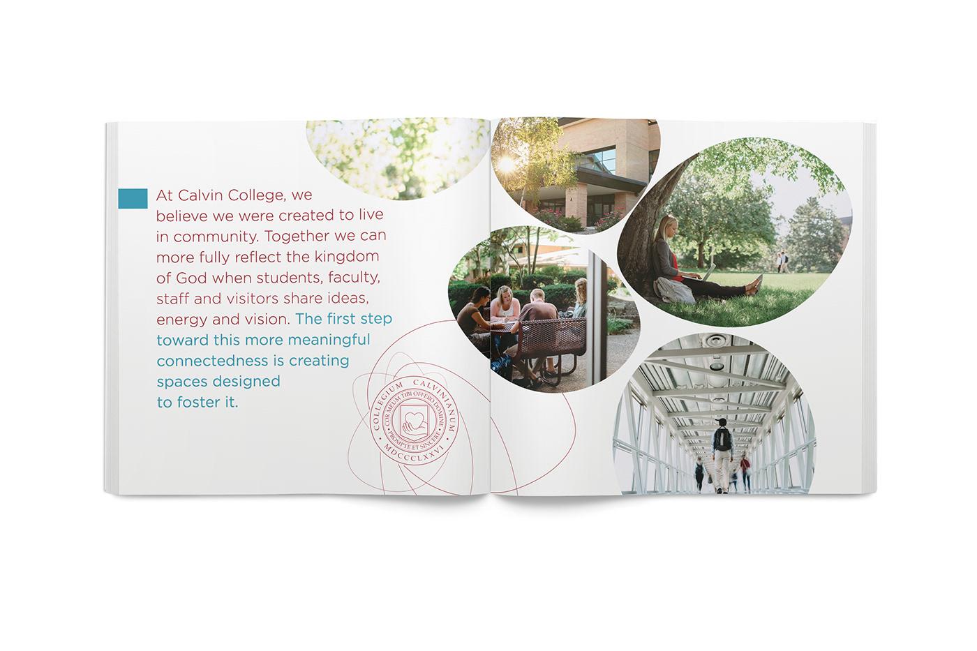 campaign Booklet college fundraising graphic design  box art direction