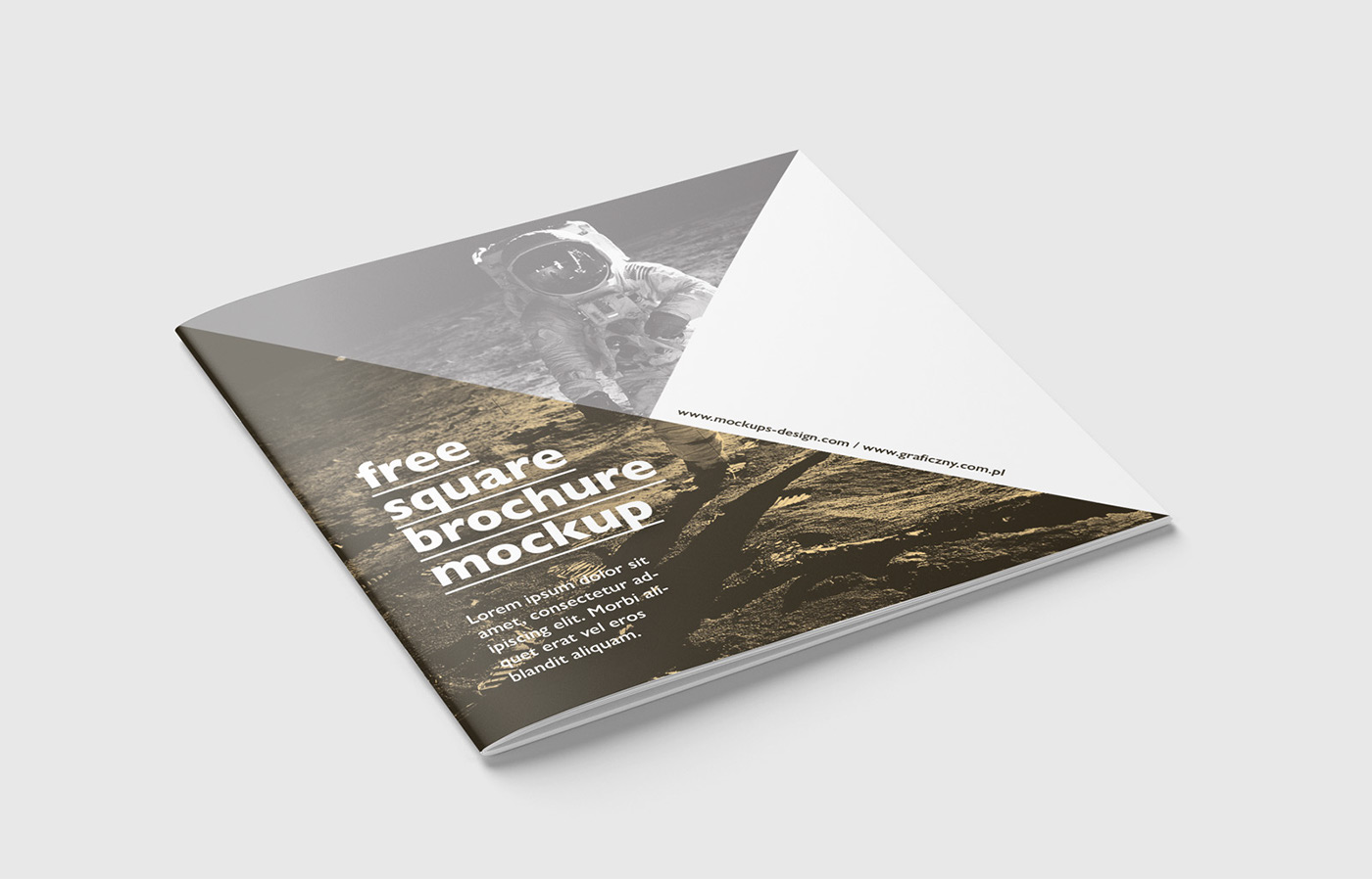 Misure Brochure 2 Ante.Free Square Brochure Mockup On Behance
