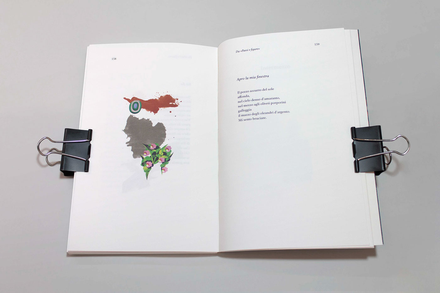 visual book book editorial Layout ILLUSTRATION  collage poems