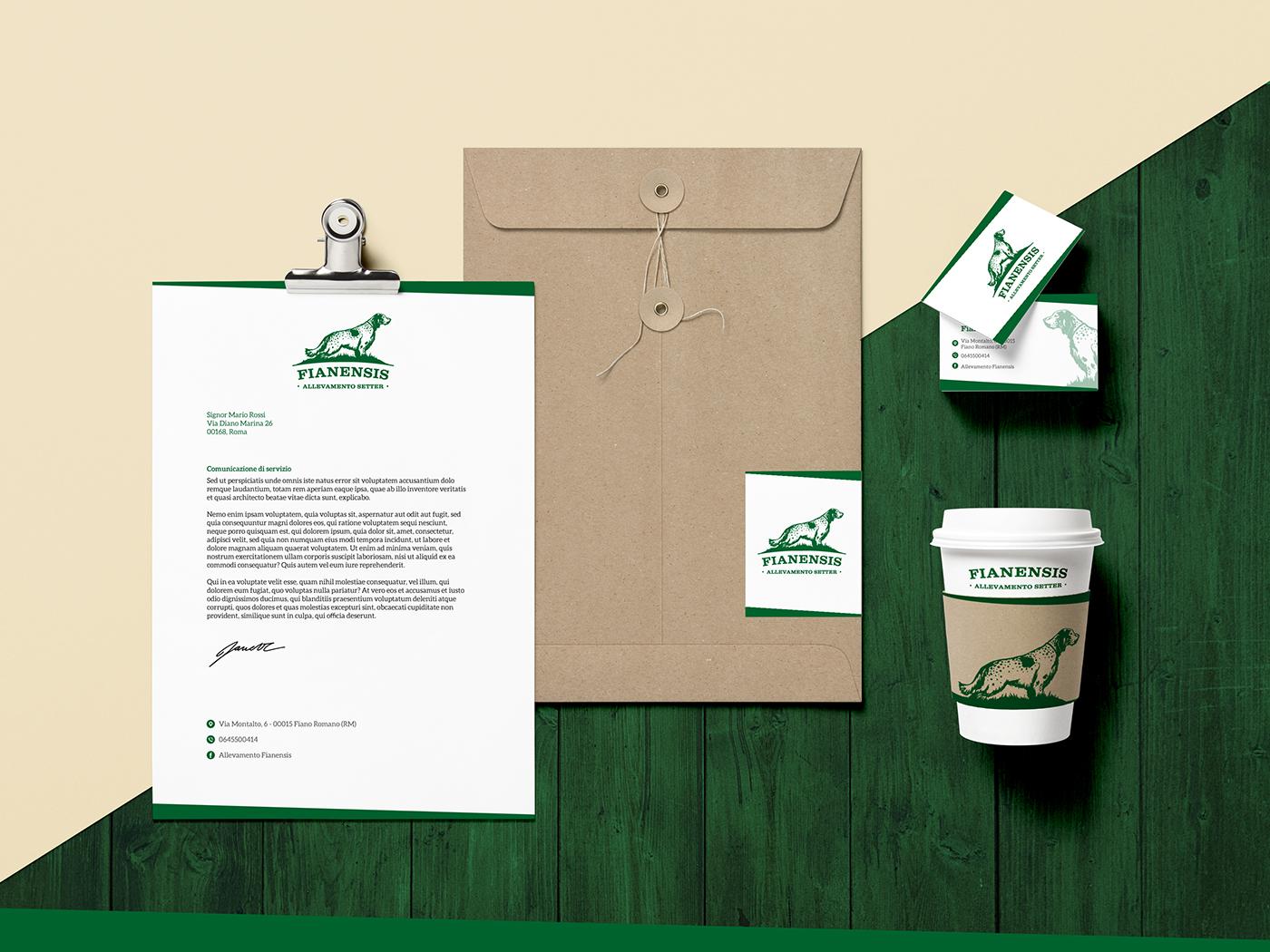 branding  brand identity logo design graphic design  dog
