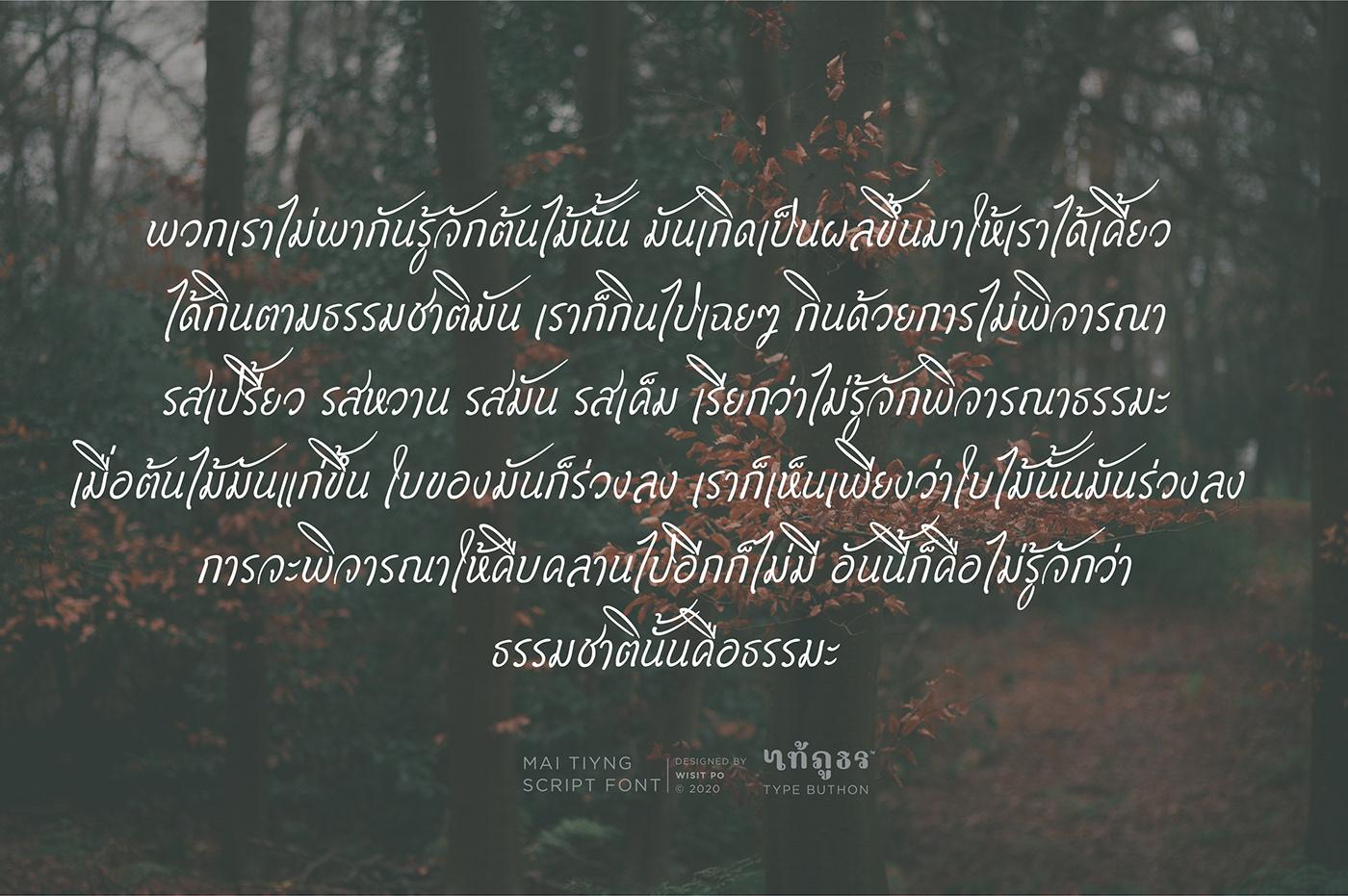 font Thai Font Script Font
