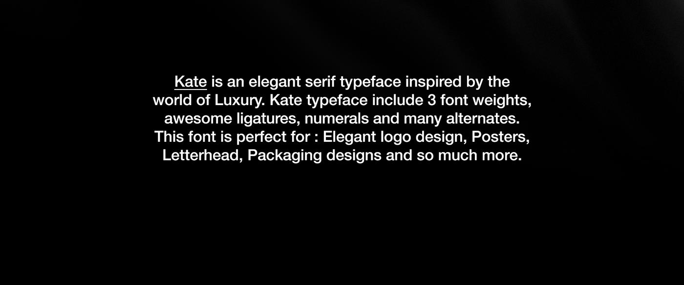 free freebie Free font Font Freebie elegant serif Serif Font Typeface free type free design display font