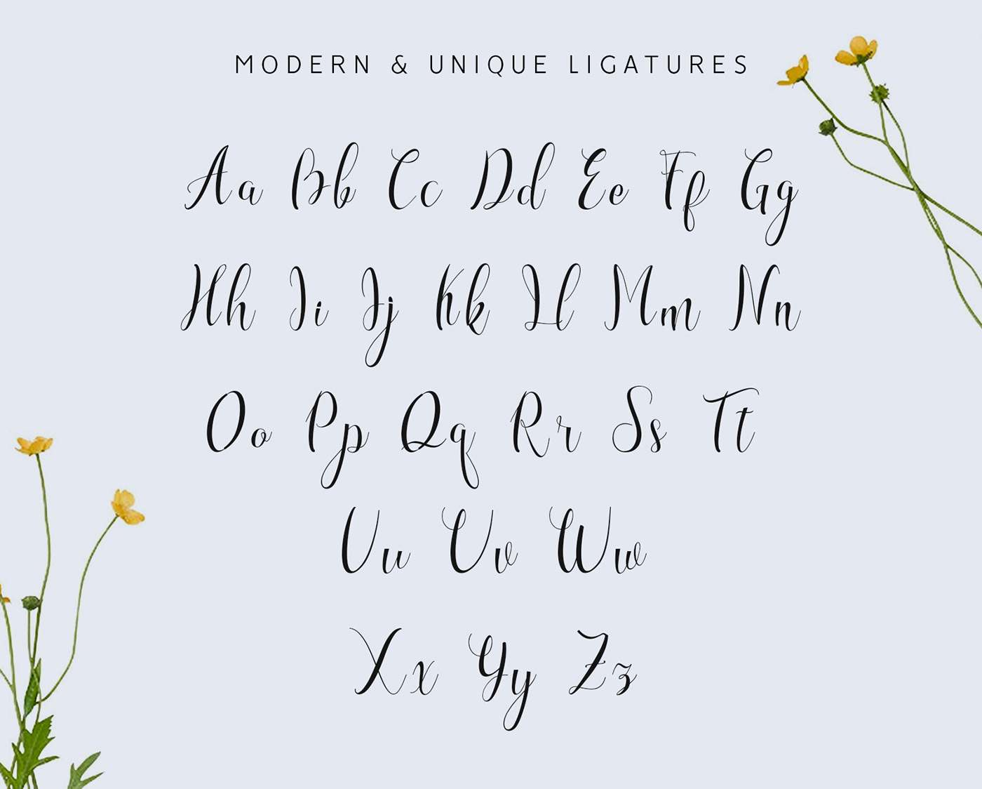 Font Freebie Free font freebies handmade font lettering signature font