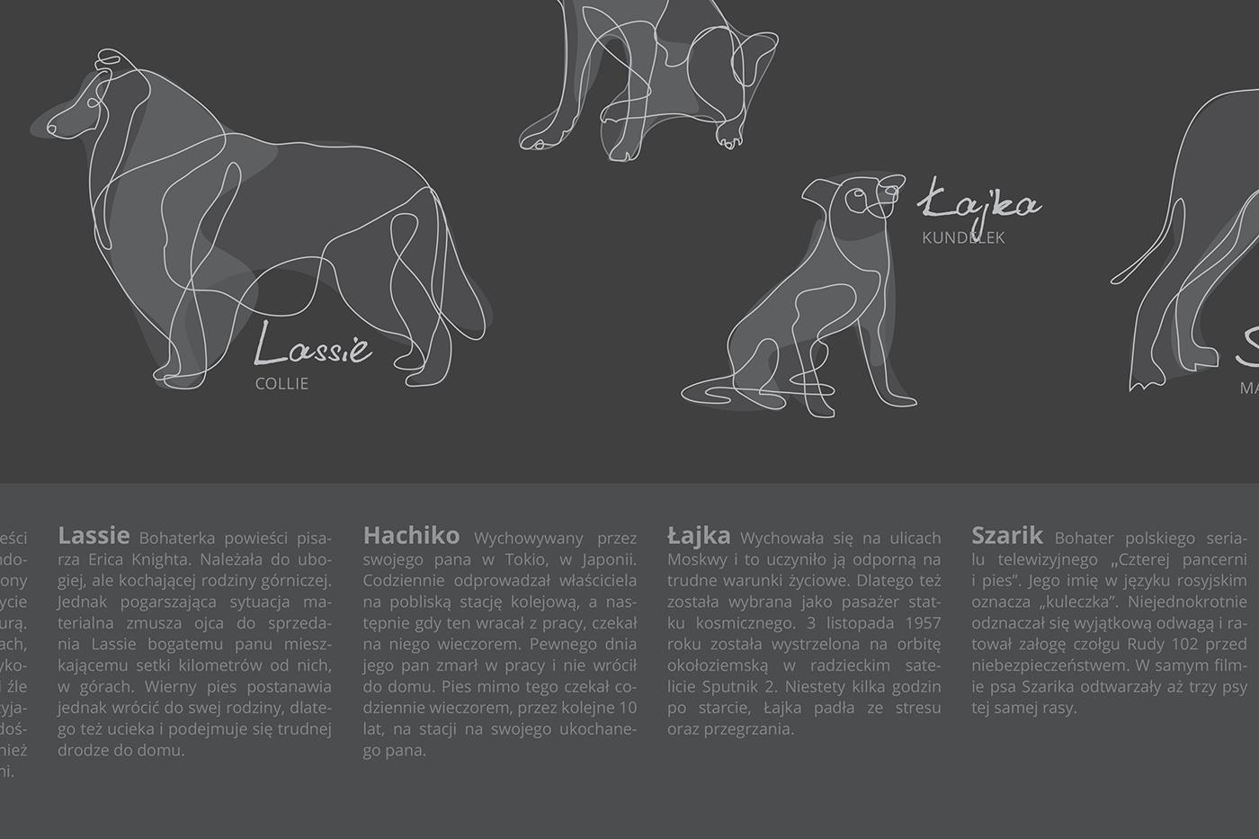 dog dogs pies psy infografika info