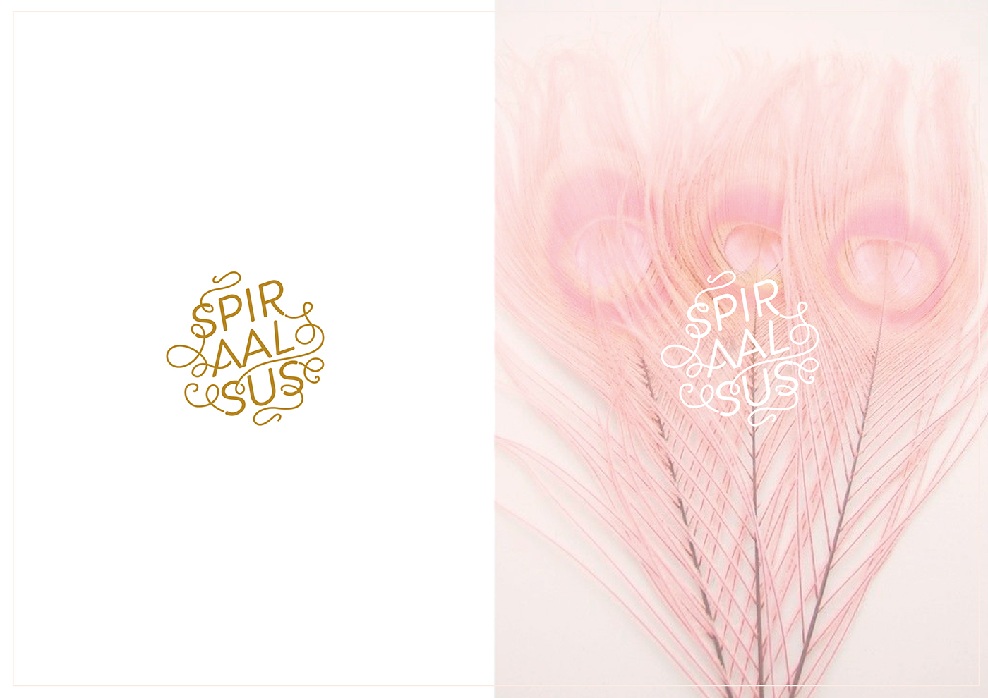logo spirality pink feminine light line