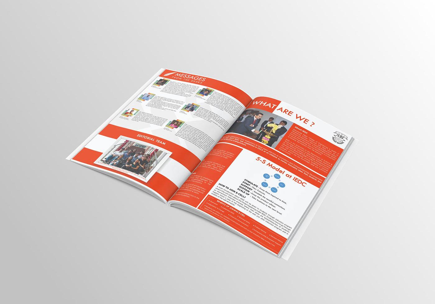 Annual Newsletter book graphic design  Illustrator magazine newsletter print