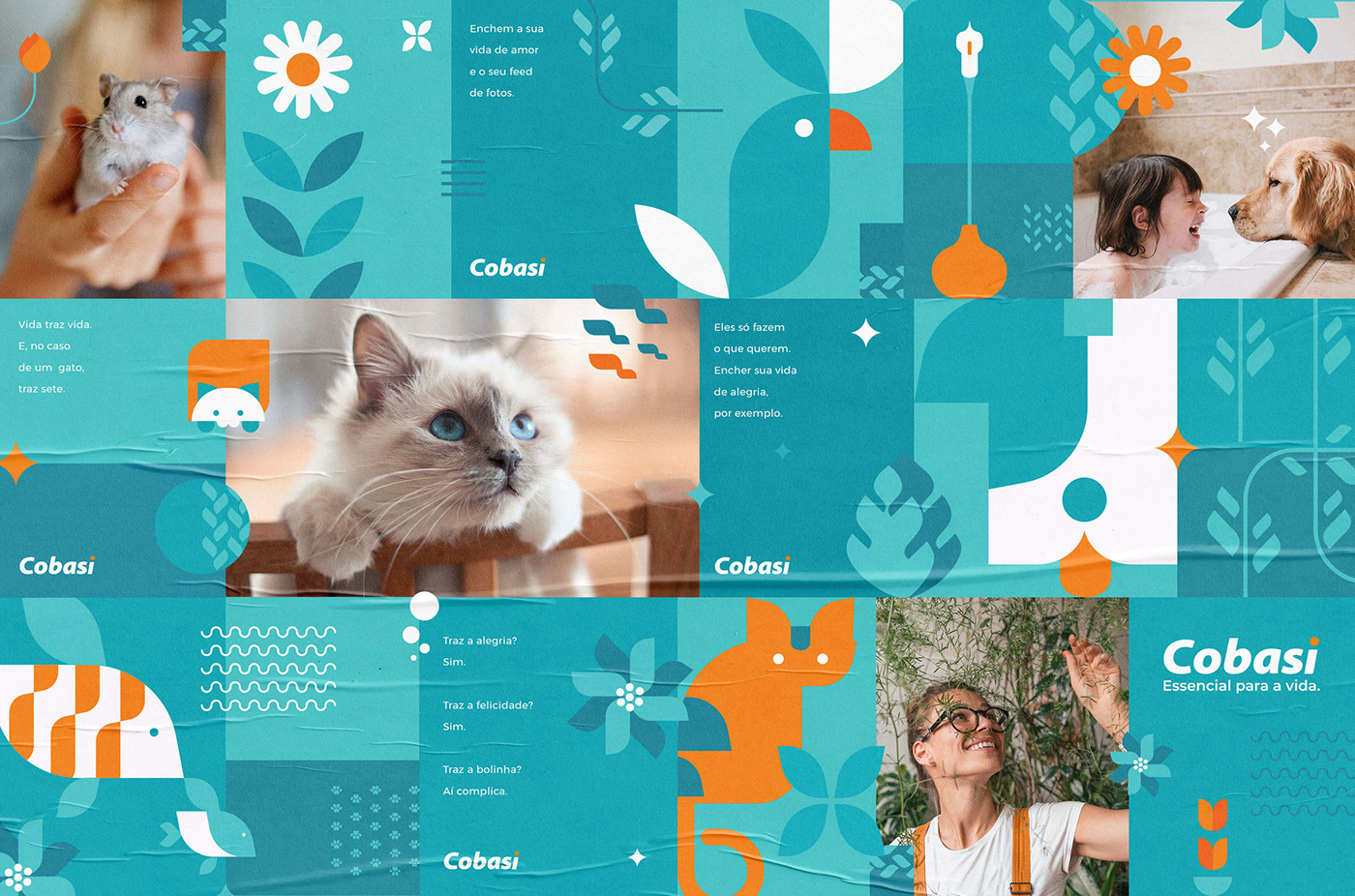 animals artplan Brazil Cat COBASI dogs Film   Pet pets petshop