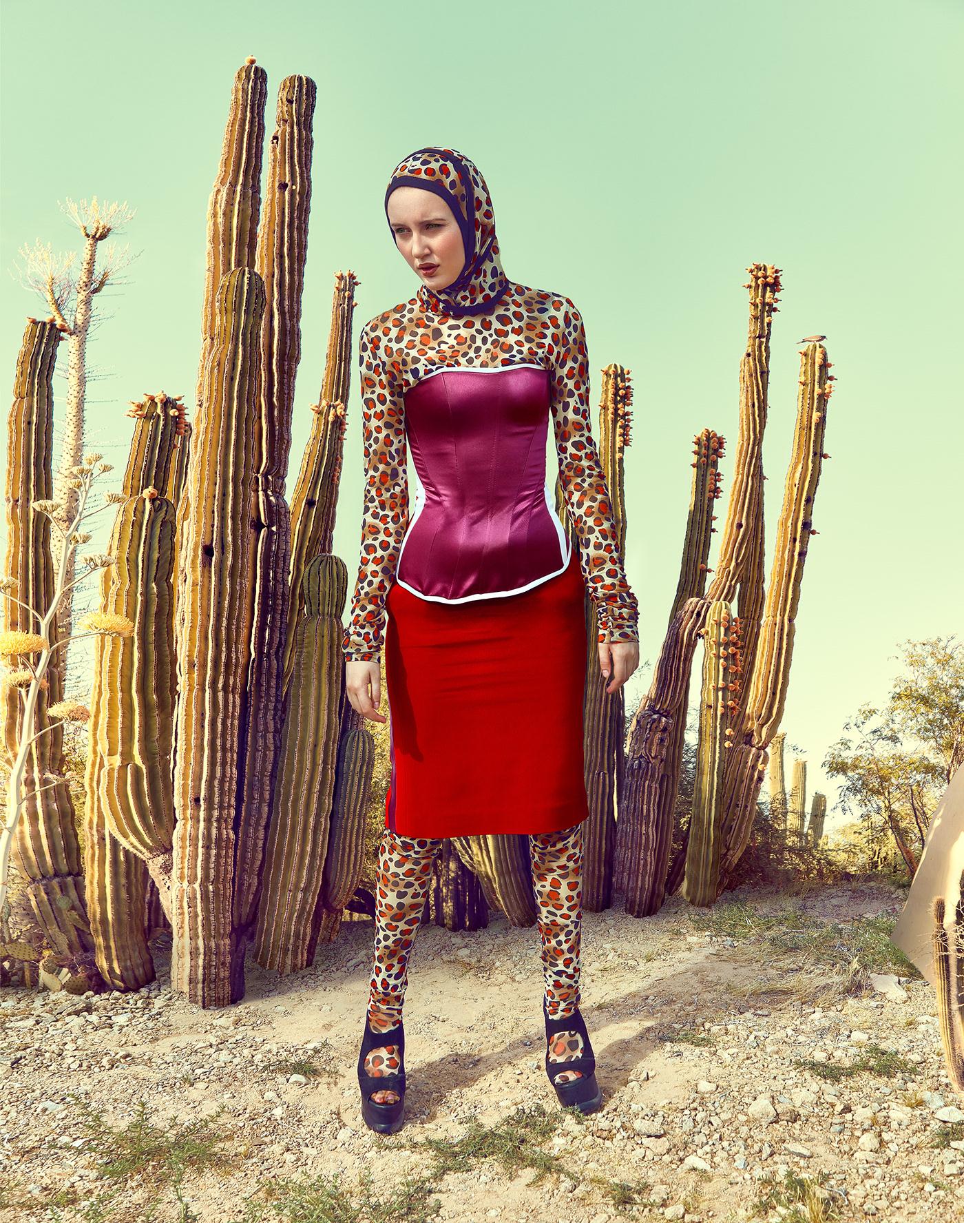 band cactus chapeau colorful desert hat musician portrait Portraiture sand