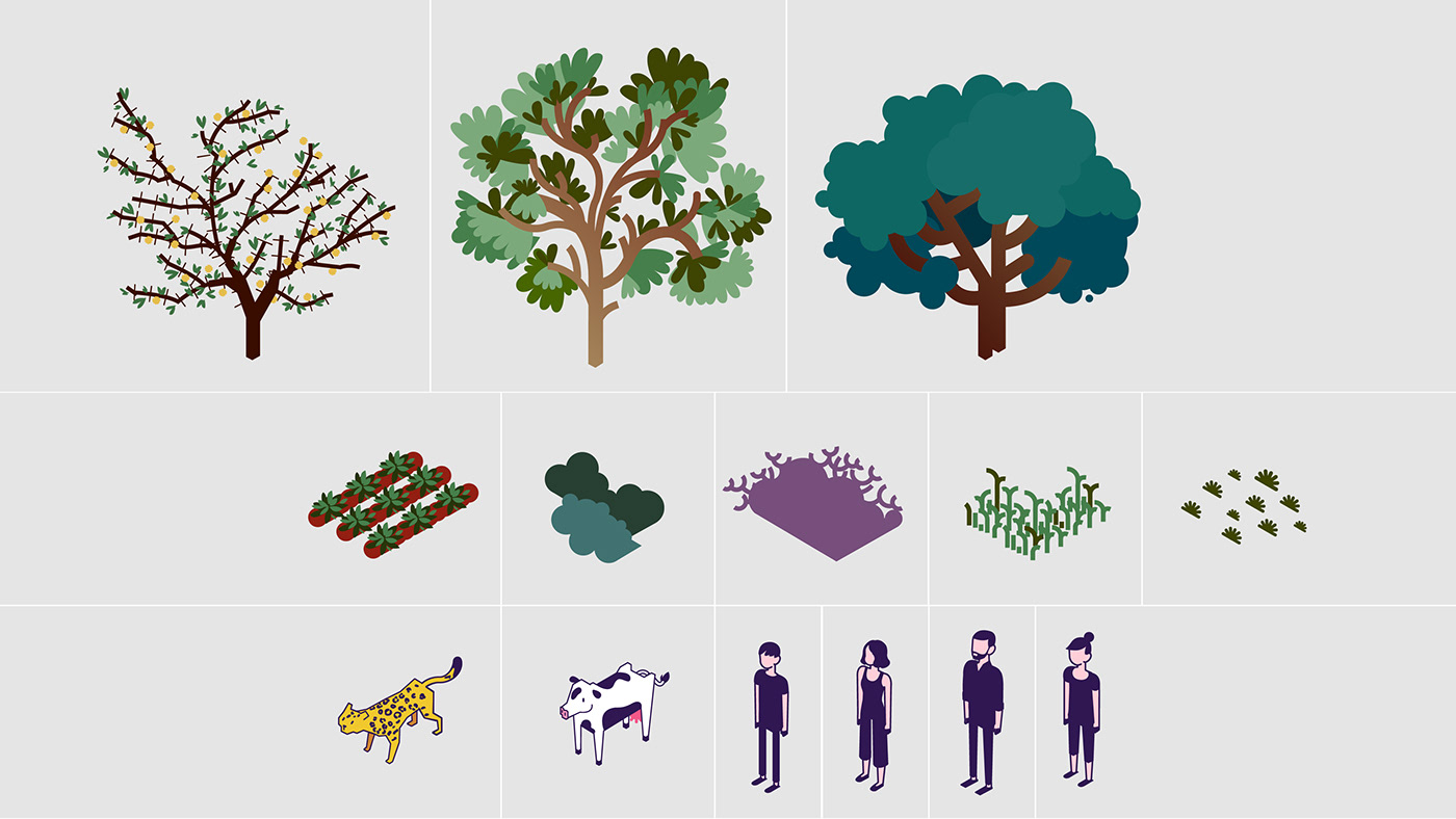 infografia infographics Ecology landscape icon Isometric Isometria yaguarete argentina cordoba