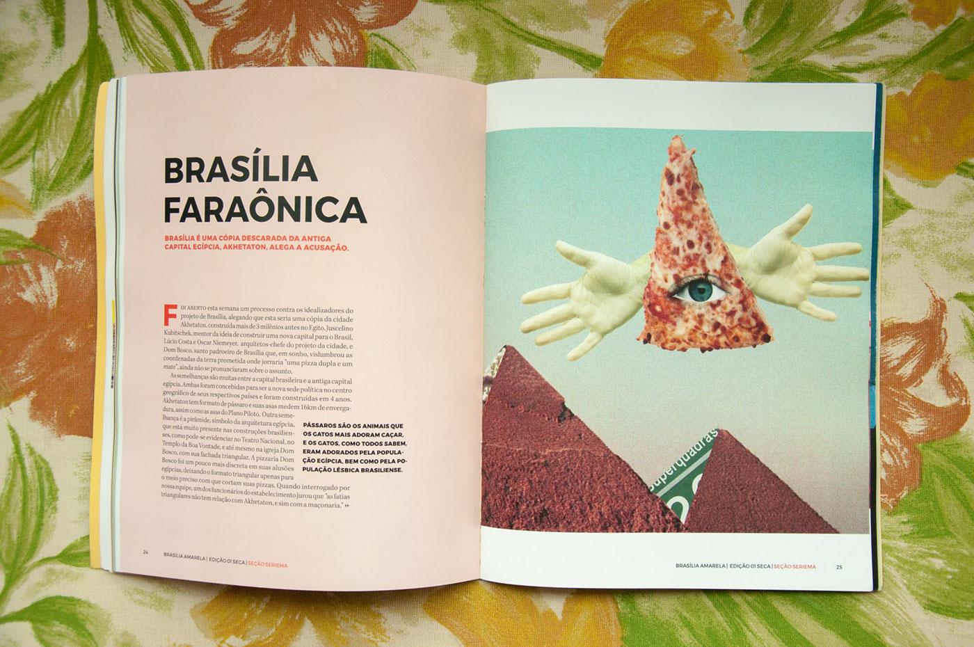 brasilia amarela yellow magazine traditional ink collage fiction fantasy city print