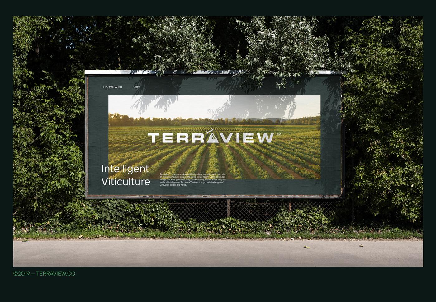 artificial intelligence branding  Data engineer Startup Technology Terraview vineyard visual identity