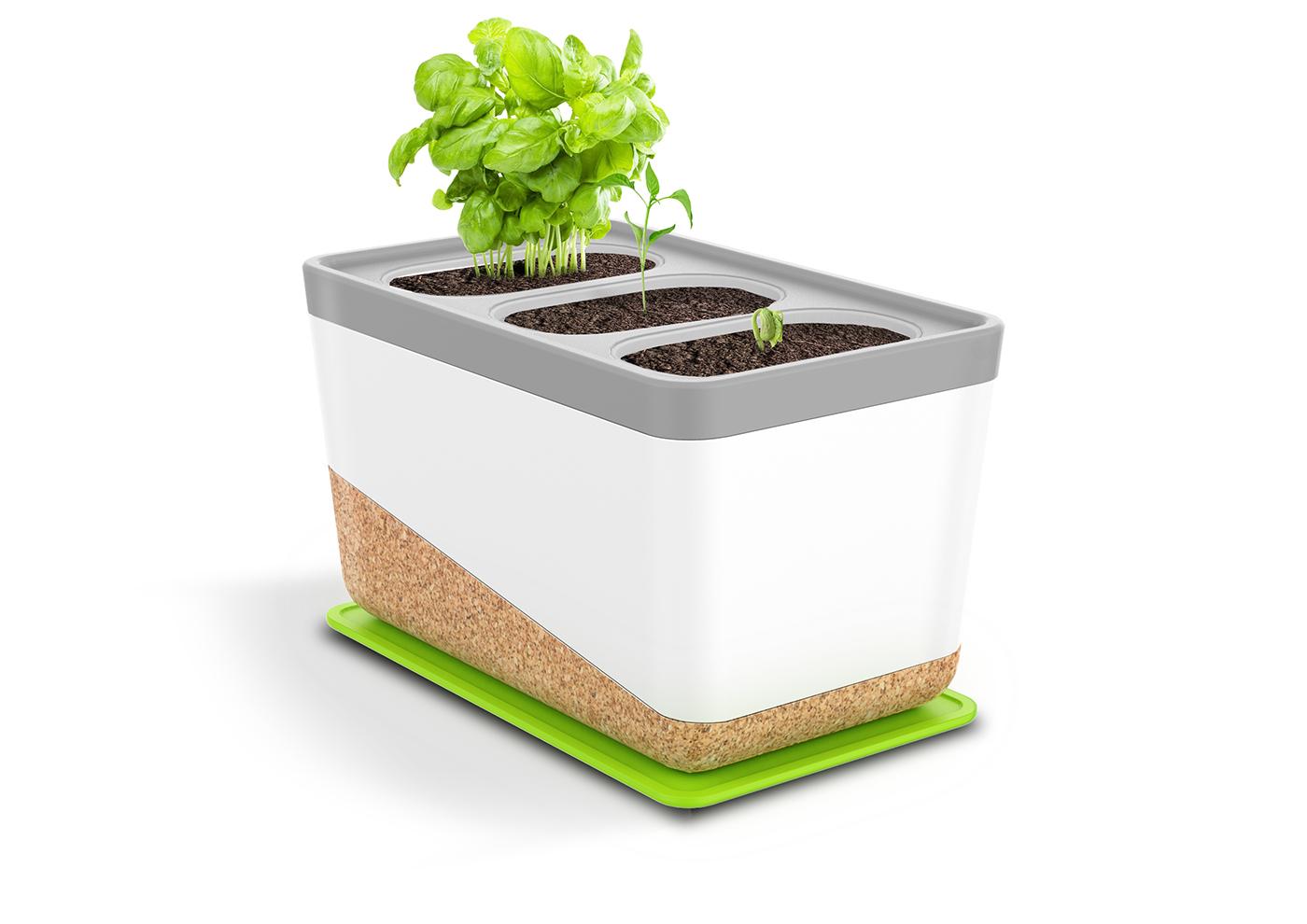 herb garden Coffee coffee waste urban living Home Garden plant pot Plant eco friendly Sustainable circular economy