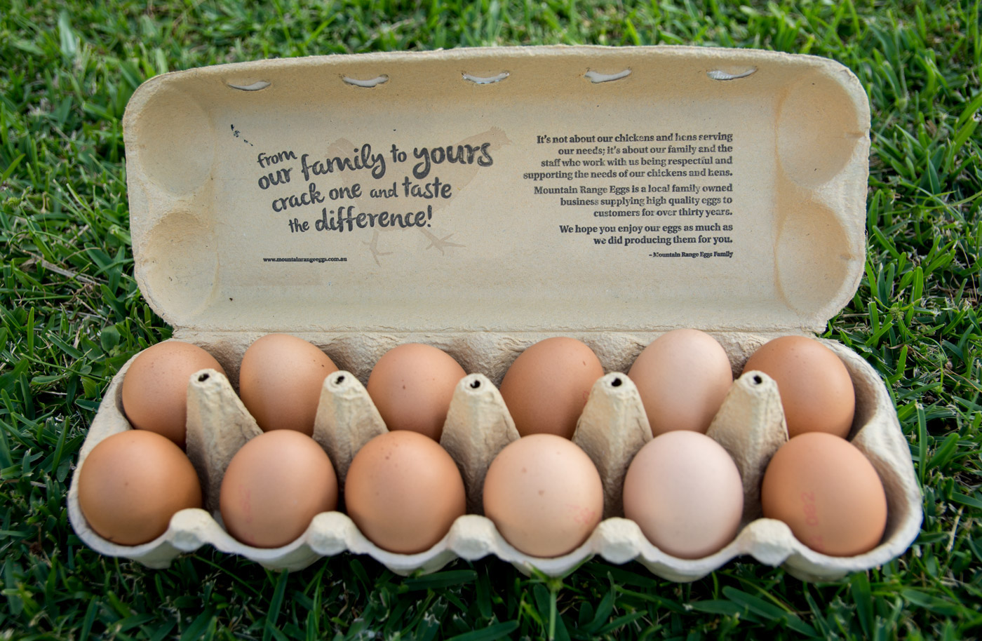 eggs eggs packaging free range Illustrative Fun hard drawn