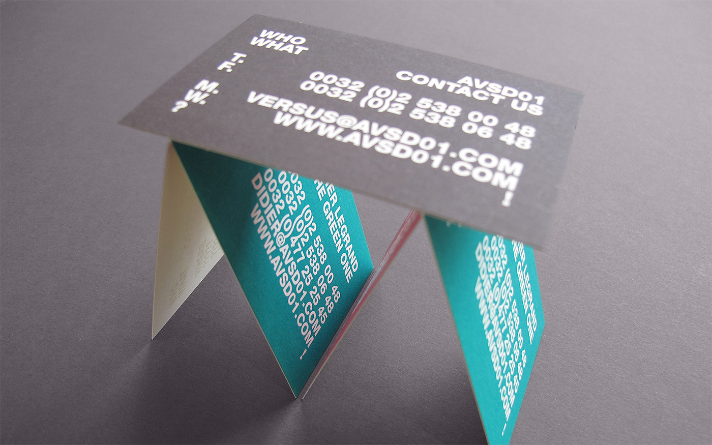 business card spot colors Varnish print FPO