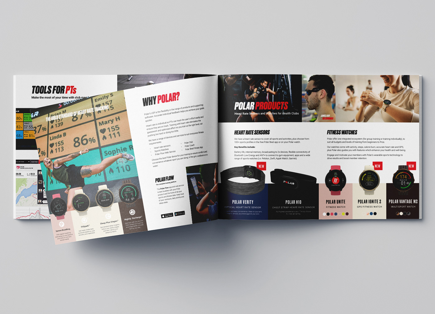 Booklet branding  brochure digital flyer graphics information print sales sport