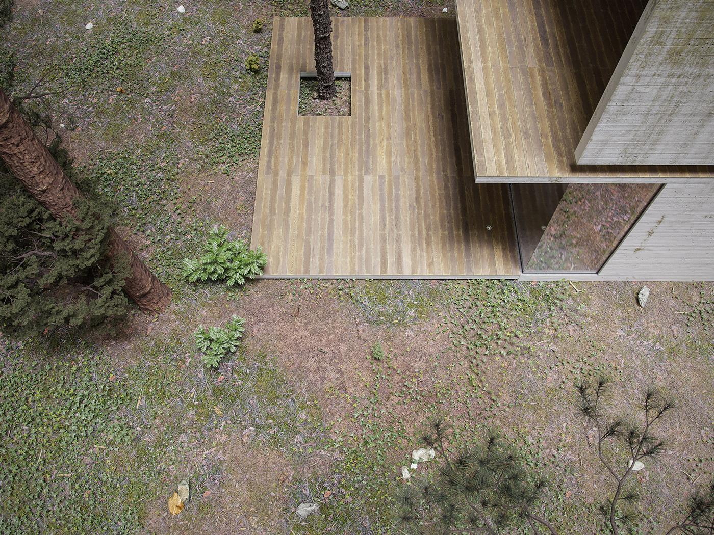 3D architecture ARQUITETURA art concrete decor exterior forest Fotografia Photography