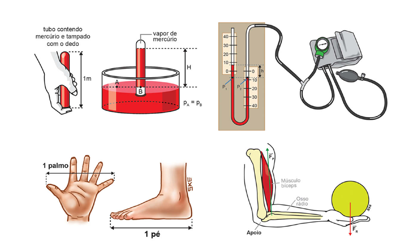 physics graphics infographics illustrations educational medical technical biology