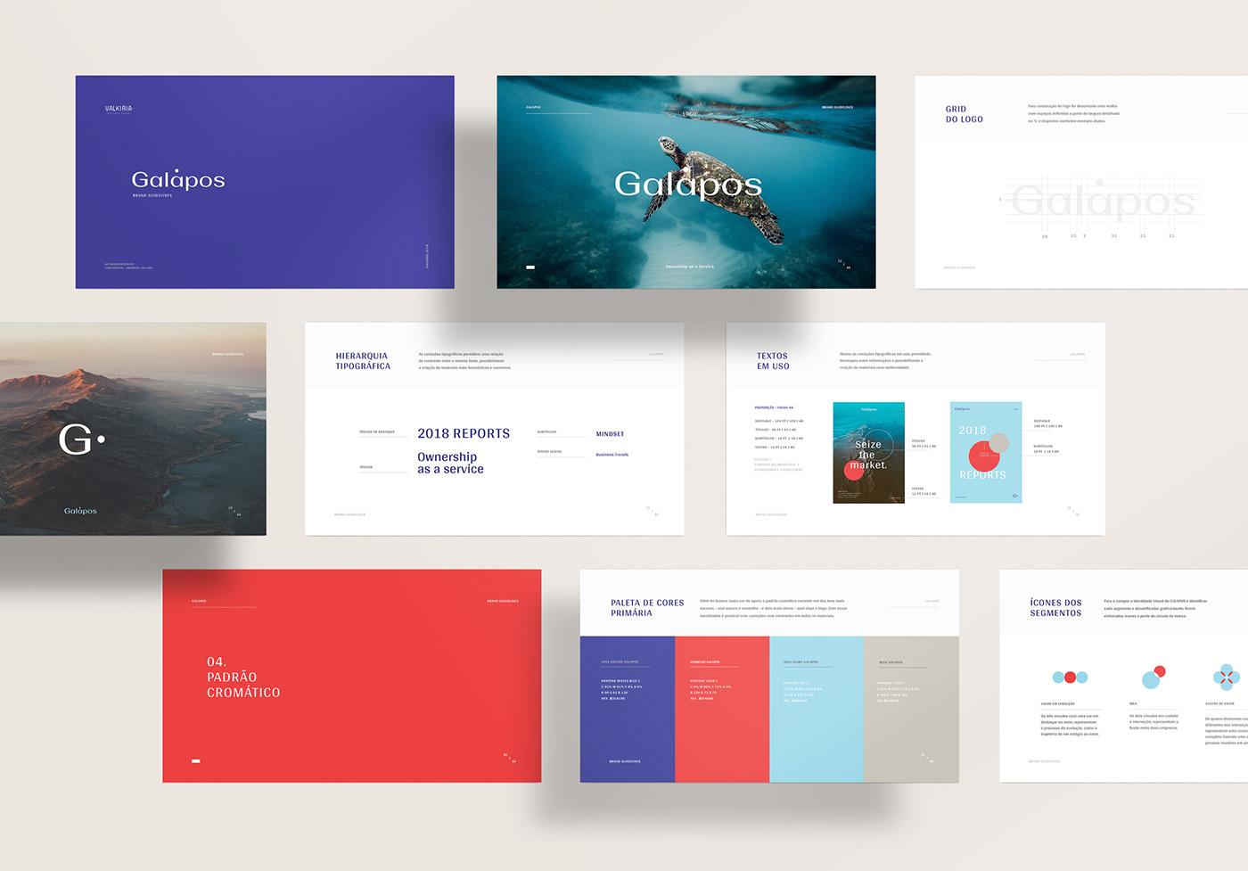 VALKIRIA graphic design  branding  motion logo Stationery design poster business Galapagos