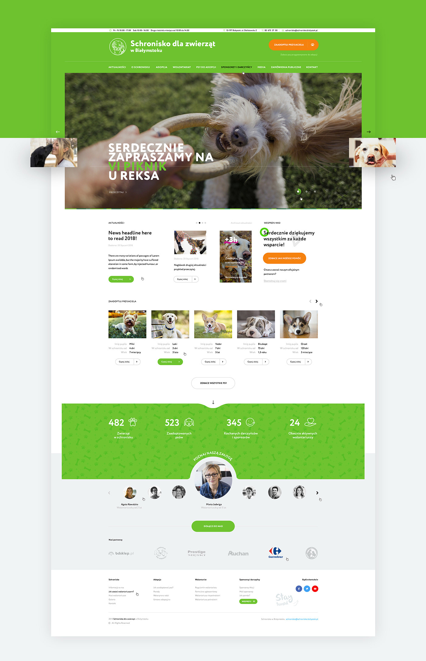 animals shelter dogs non-profit volunteers poland animal charity Website green