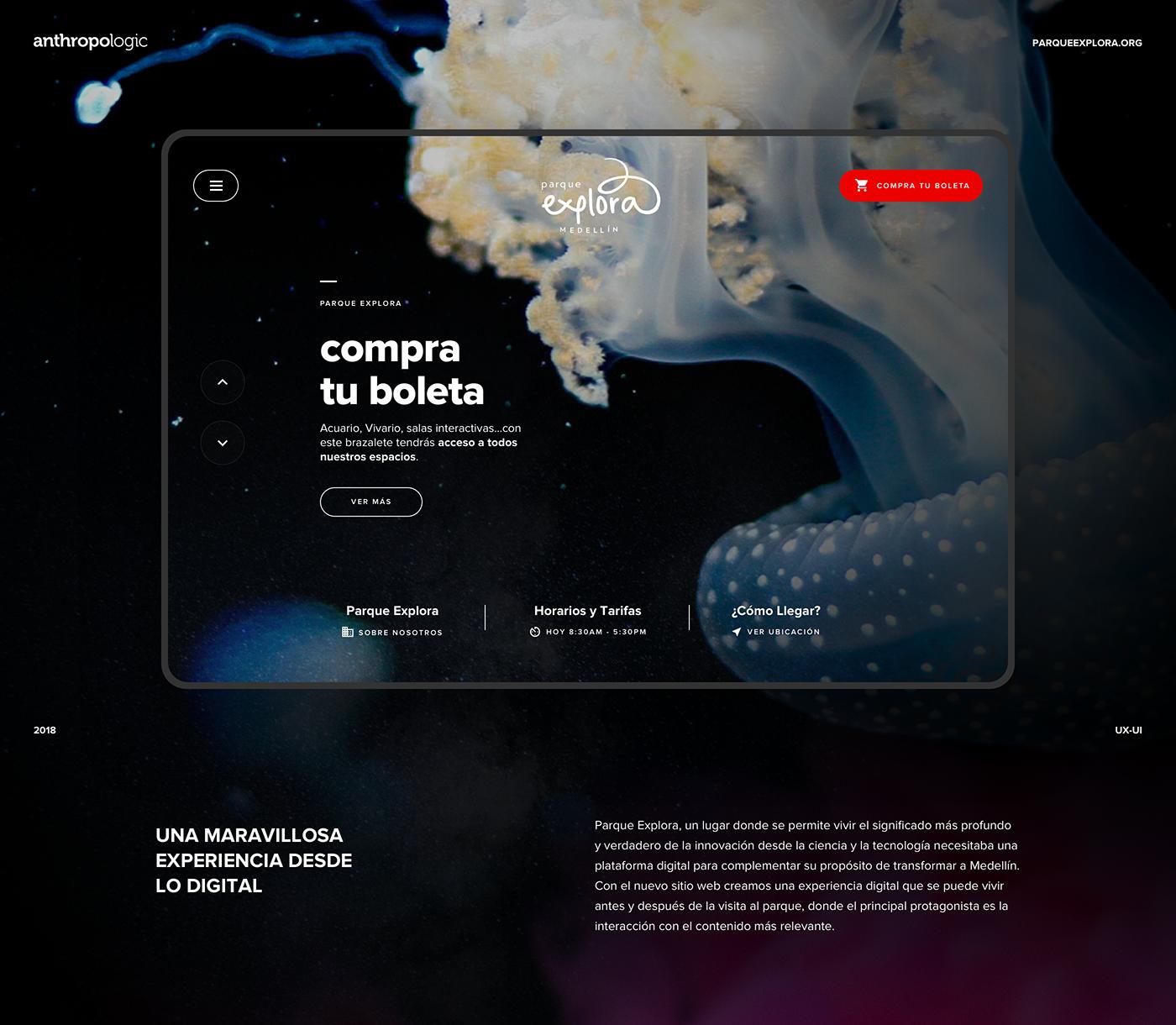 museum,ux,UI,intercative,culture,Technology,medellin,Photography ,Webdesign,Web