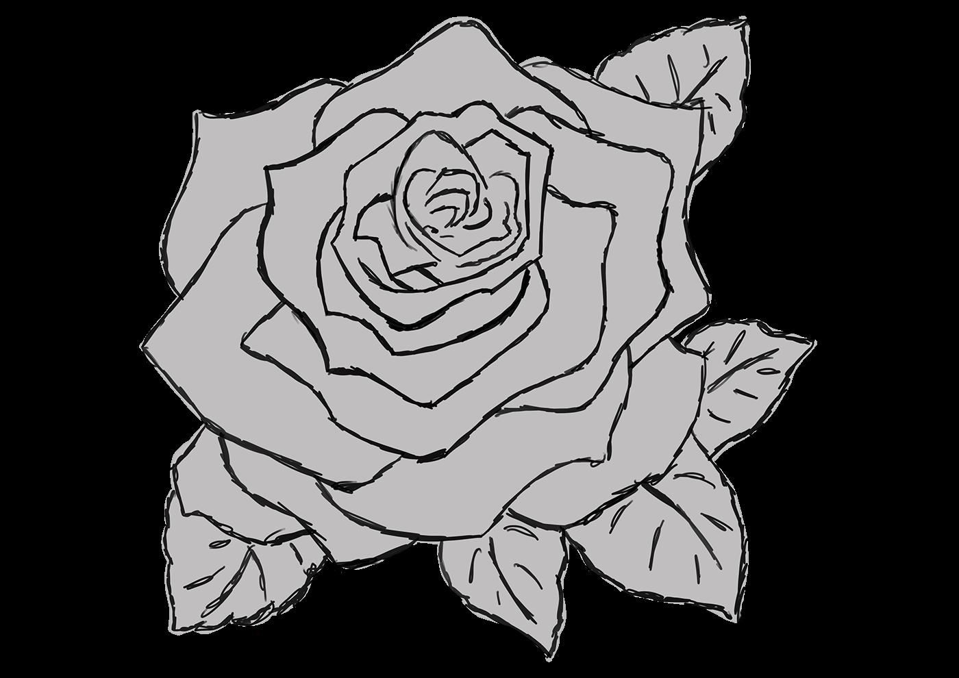 精緻的19款玫瑰花水彩素描欣賞