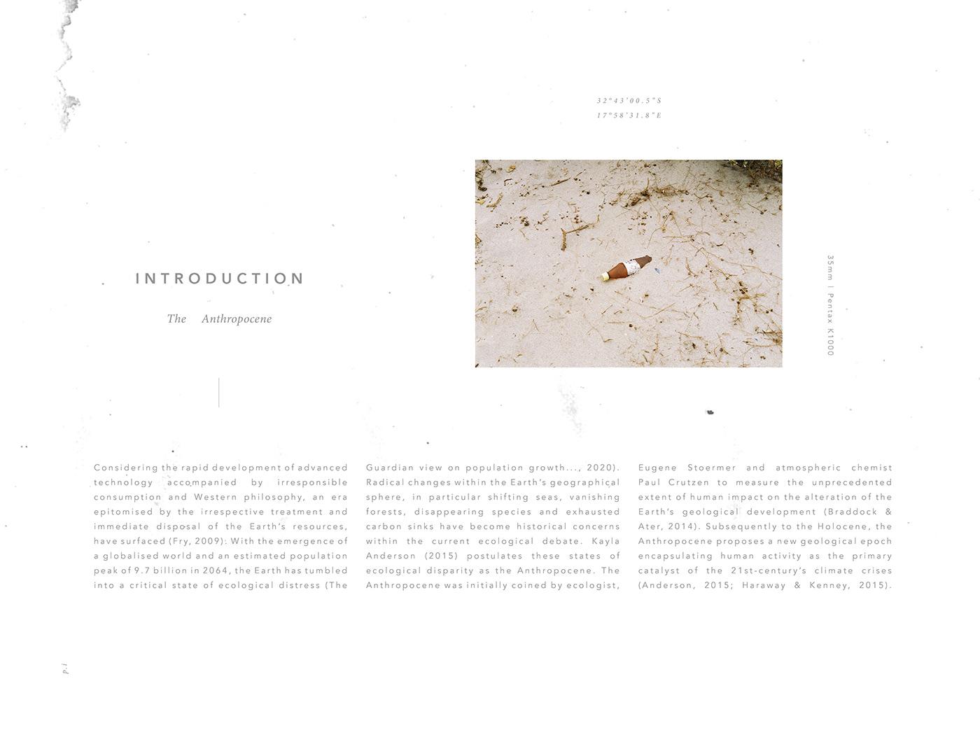 anthropocene Exhibition  fine art ILLUSTRATION  pattern design  printmaking monoprint Nature Catalogue