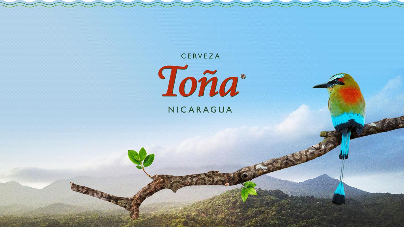 Advertising  art direction  beer creative facebook post graphic design  marketing   nicaragua post social media