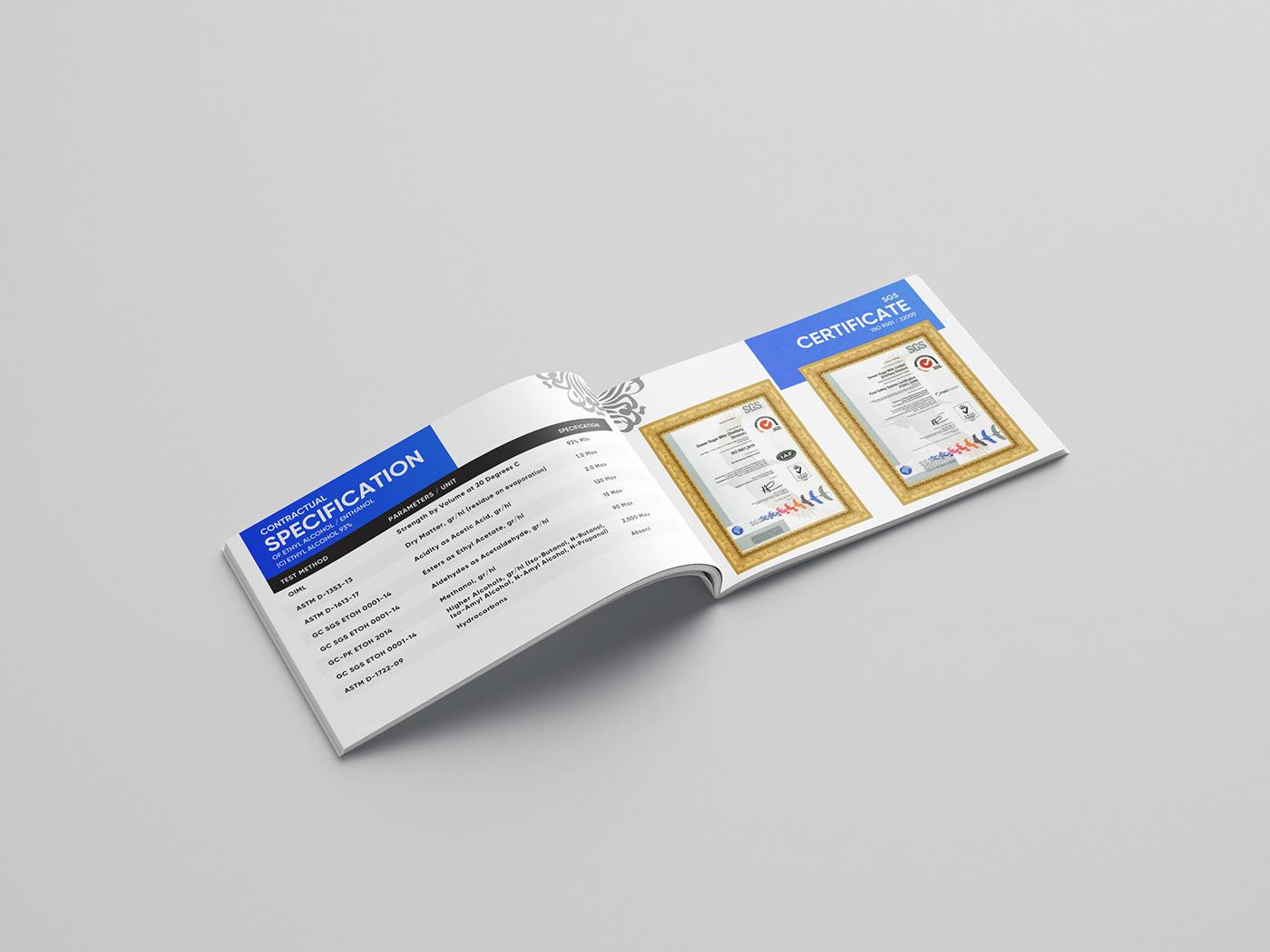 blue bluebroucher Broucher corporatedesign dewan leaflet mills broucher polygon sugar nabs group
