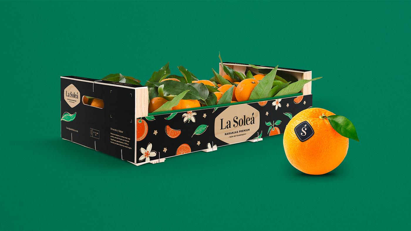 oranges Fruit Packaging andalucia spain spanish premium wood orange box