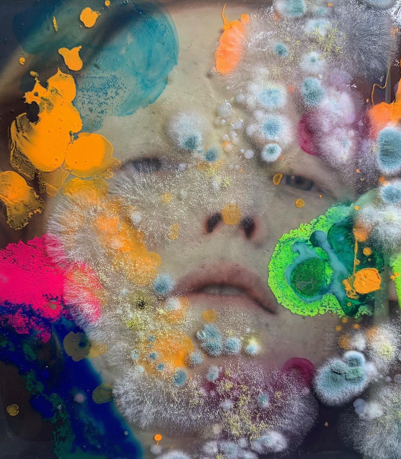art Bacteria biology colour design face faces FINEART Fungi grow laboratory micro mold pattern portrait science texture zoom