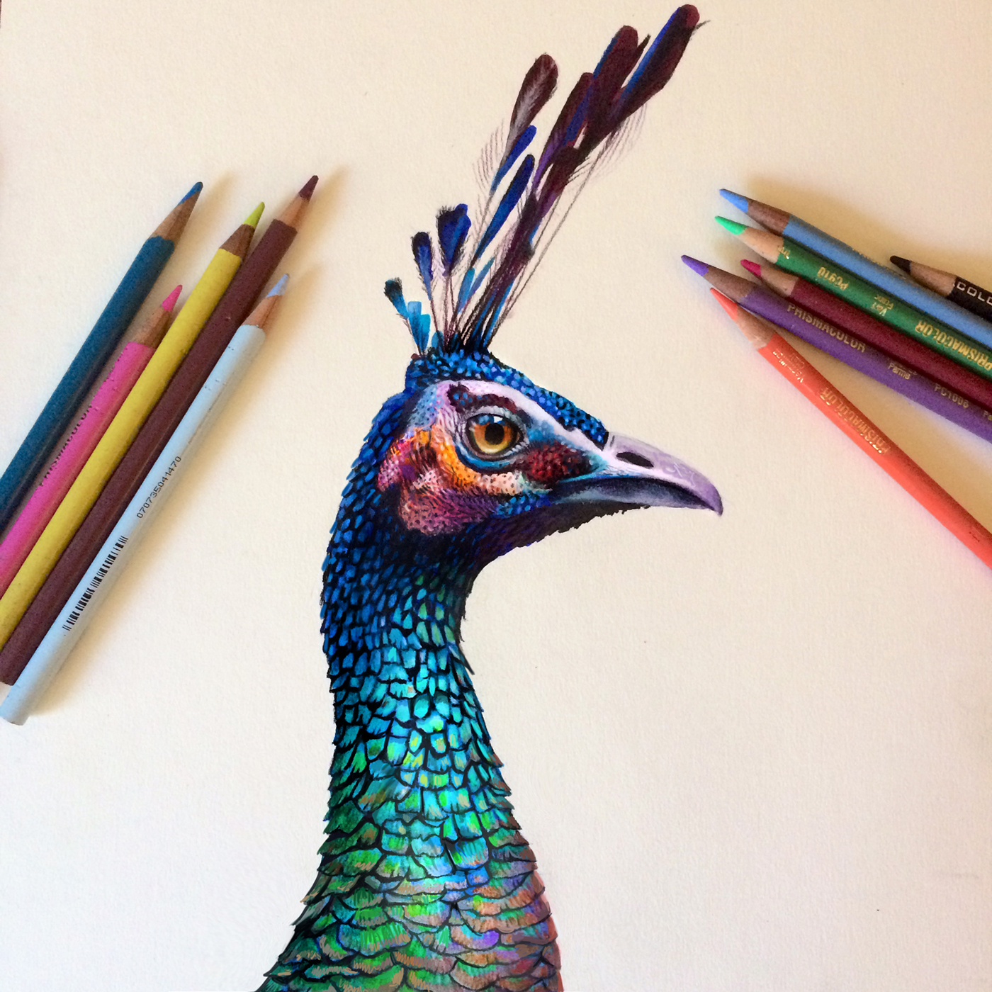 Colored Pencil Quotes. QuotesGram