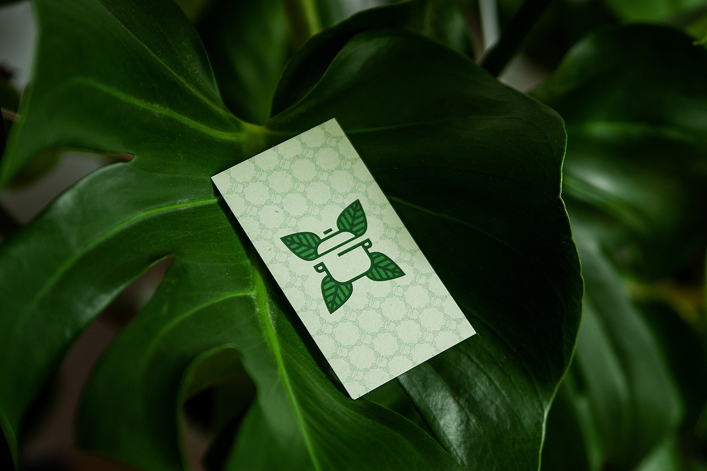 Vegan catering logo and business card