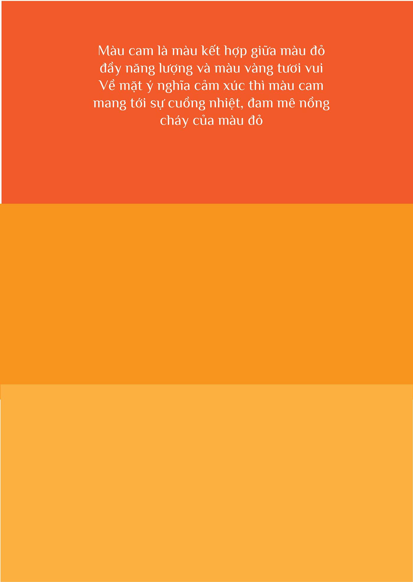 Image may contain: orange, screenshot and abstract