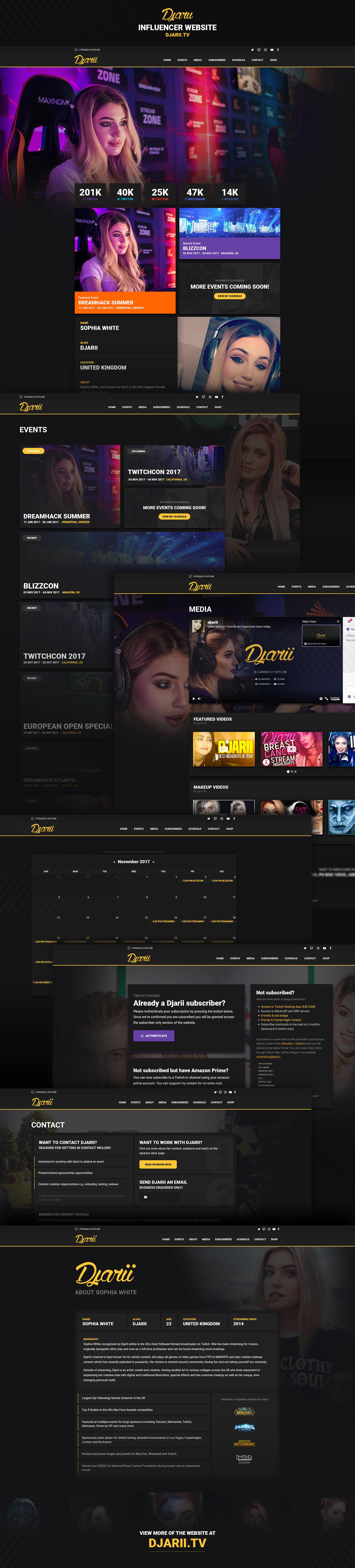 Twitch Streamer Website Website Design
