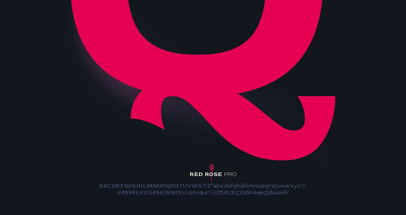 red rose Typeface Display font Latin Love India
