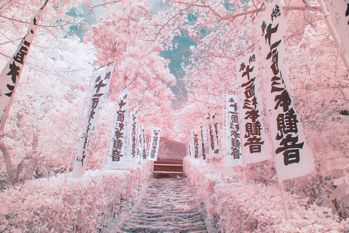 asia city Forests infrared japan lake photograohy