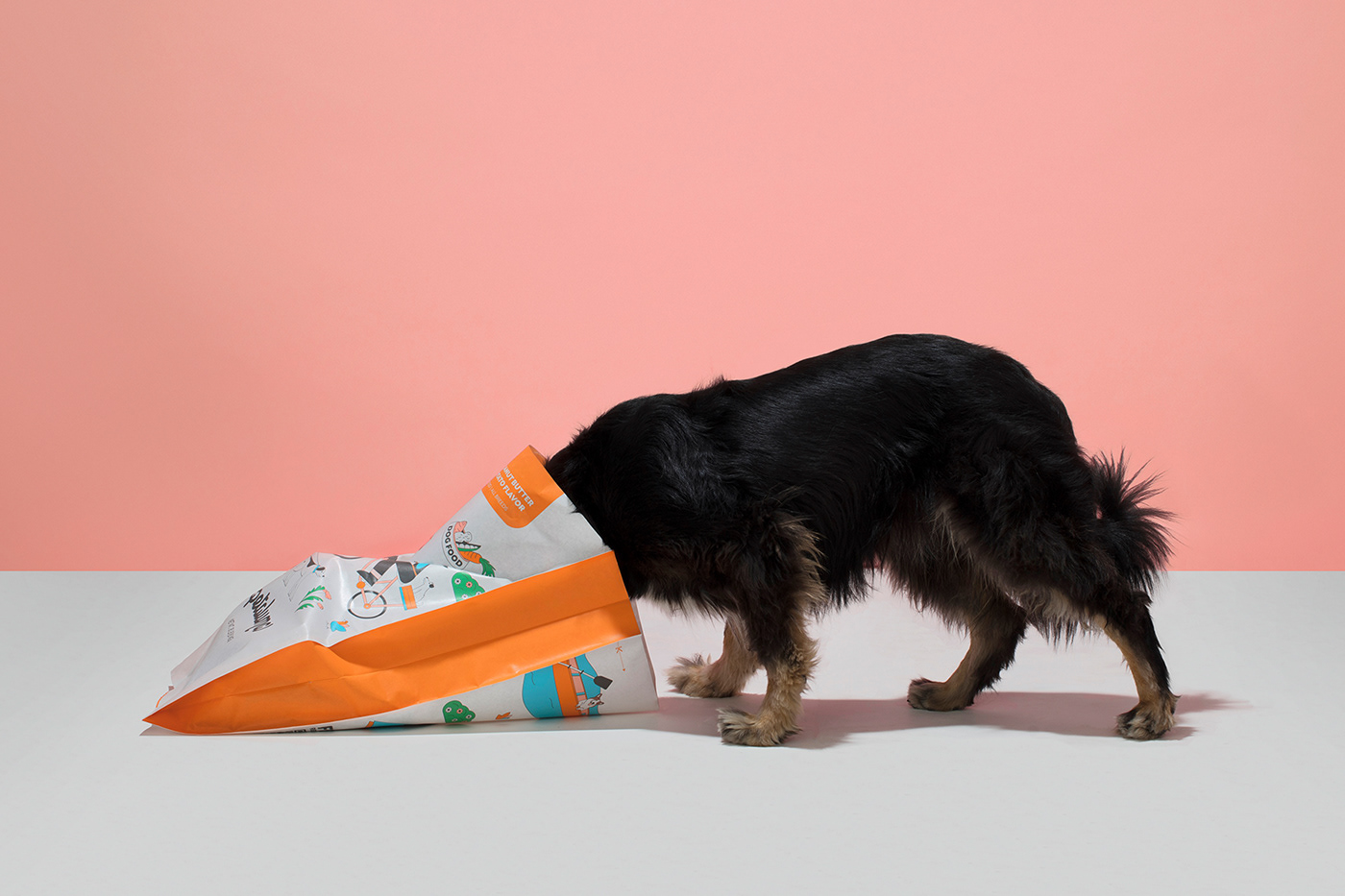 branding  dog dog food ILLUSTRATION  pets sweet potato vegan vegan dog food bowl peanut butter