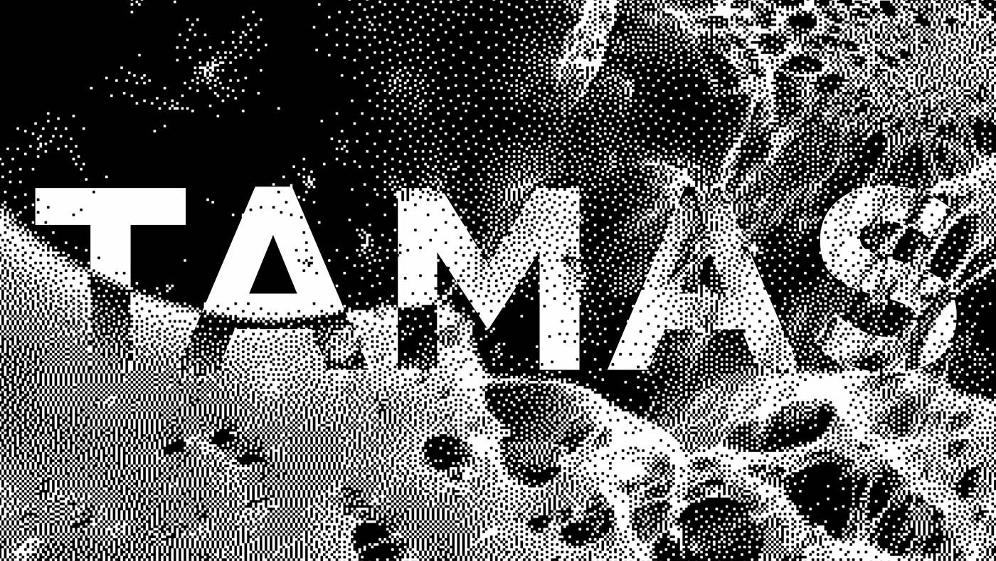 videoart pixel art music blackandwhite