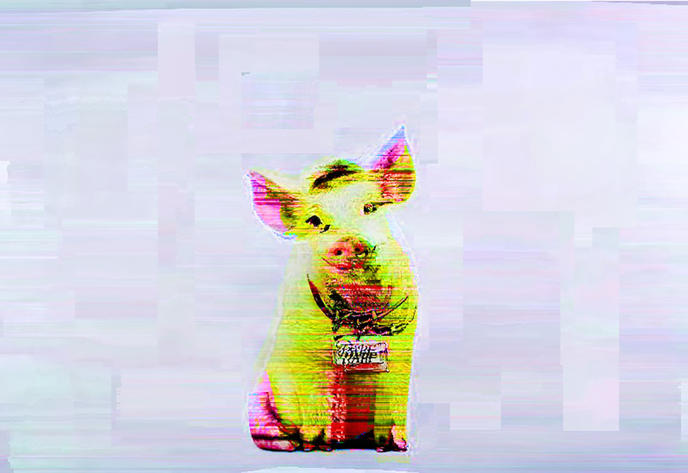 Glitch art pixel 98s 90s year past movie titanic Computer mac windows babe pig vaporwave