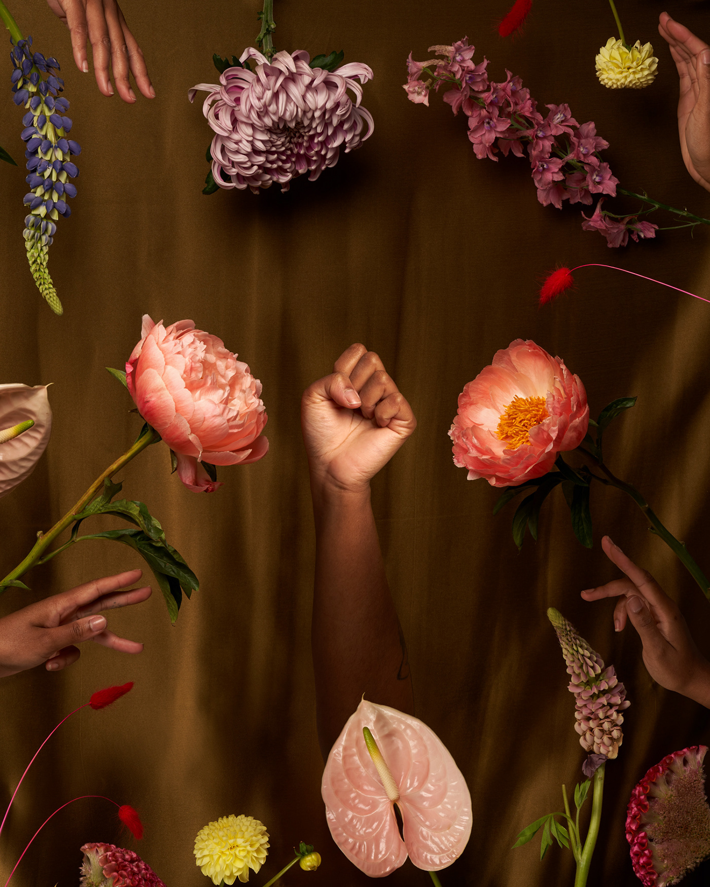 Black Lives Matter BLM braids conceptual Flowers Food  Prop Styling Social Justice Adobe Creative Residency heritage