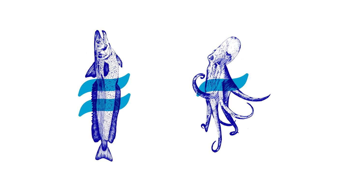 sea blue Food  art artesanal water product healthy sustentable eat