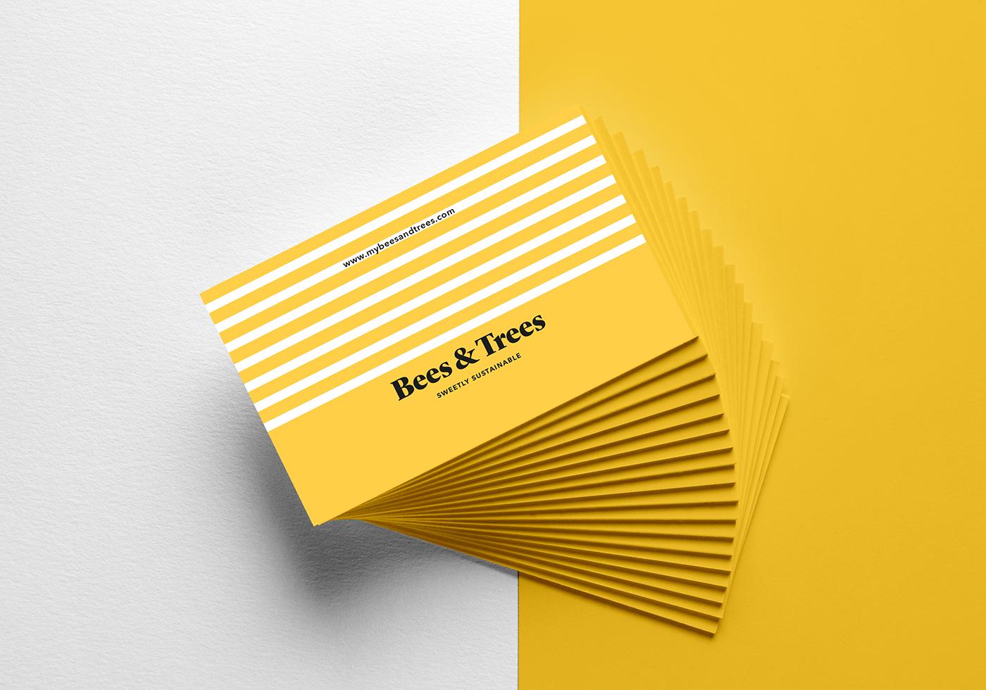 branding  Logo Design kids Pack boxes graphic design