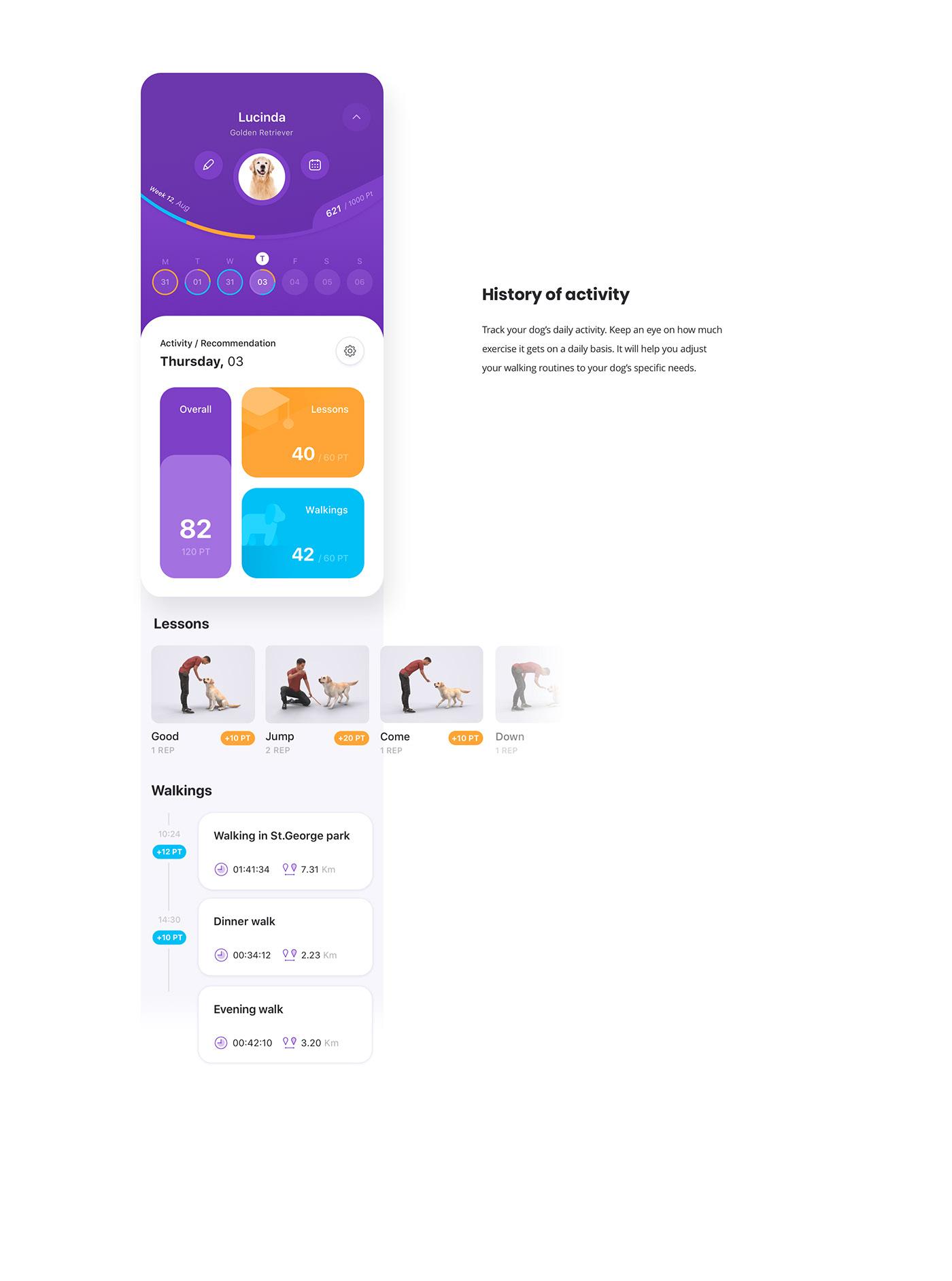 animation ,app,application,dog,dog training,GODOG,iOS App,product design ,UI,UI/UX