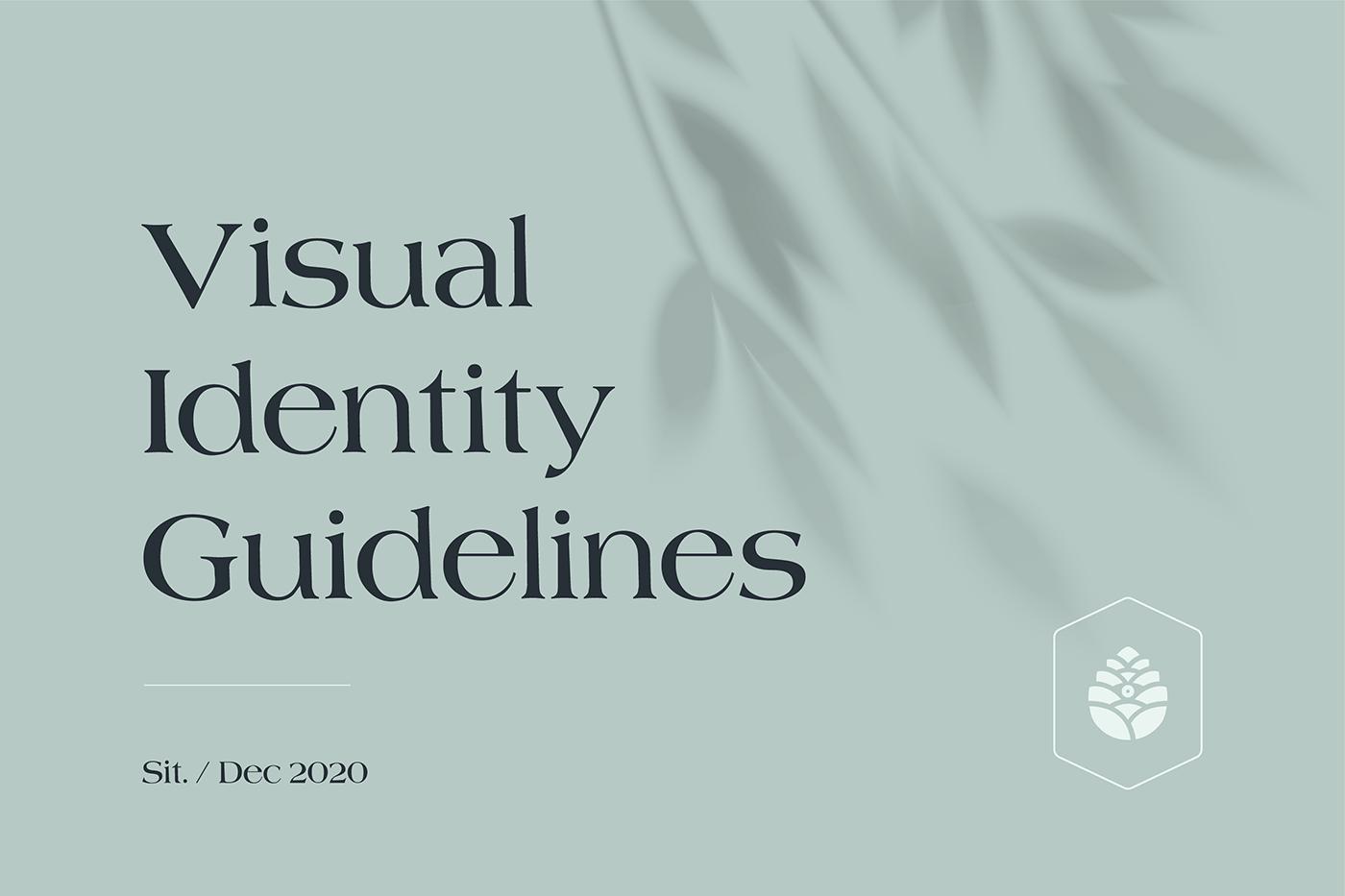 brand identity branding  guidelines identity meditation