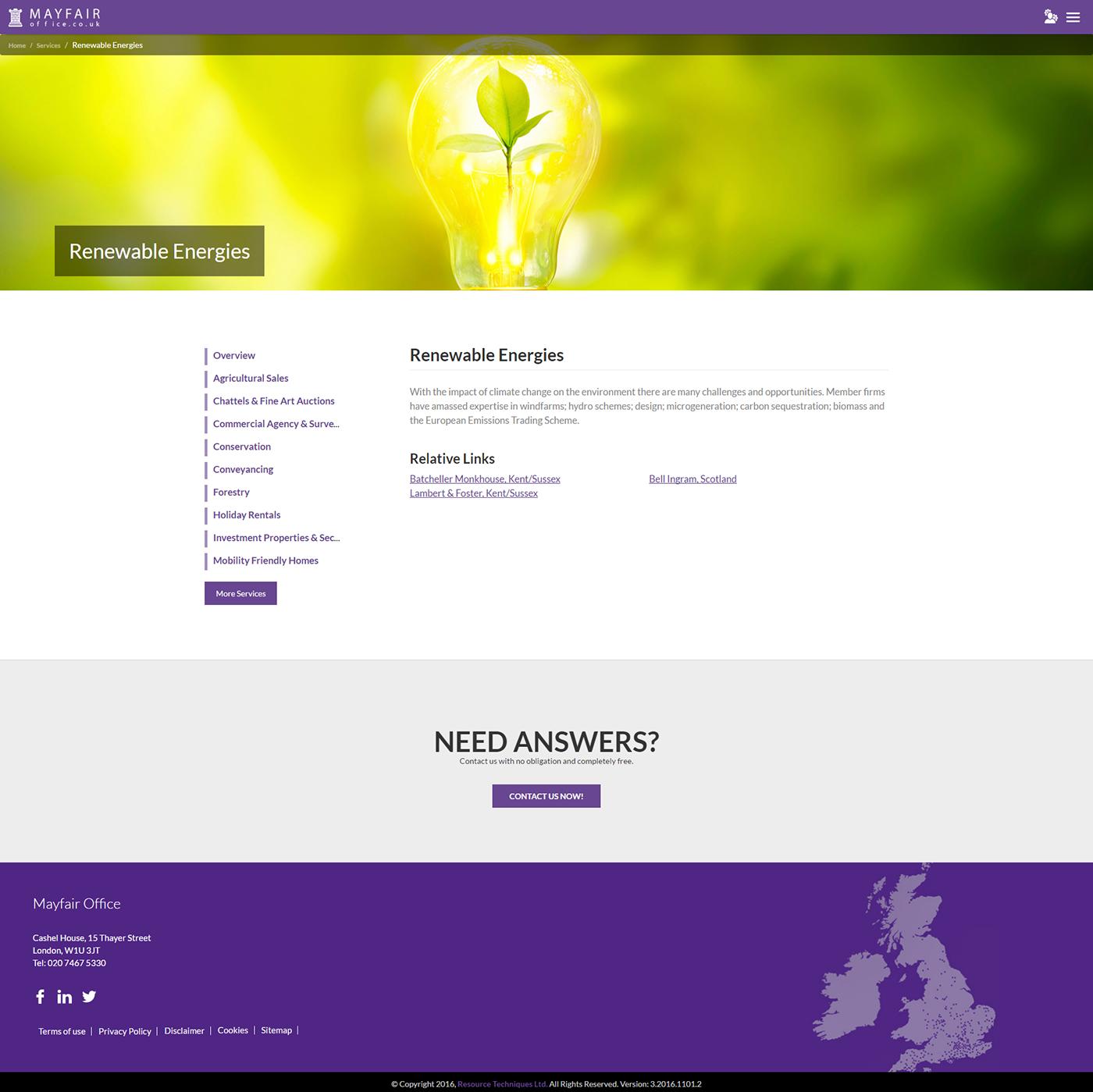 Website Web Design  clean