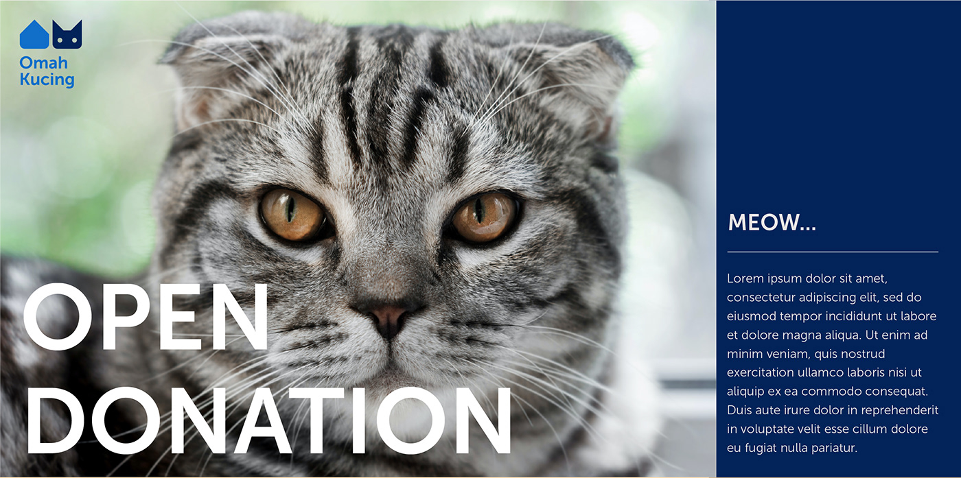 Image may contain: cat, animal and mammal