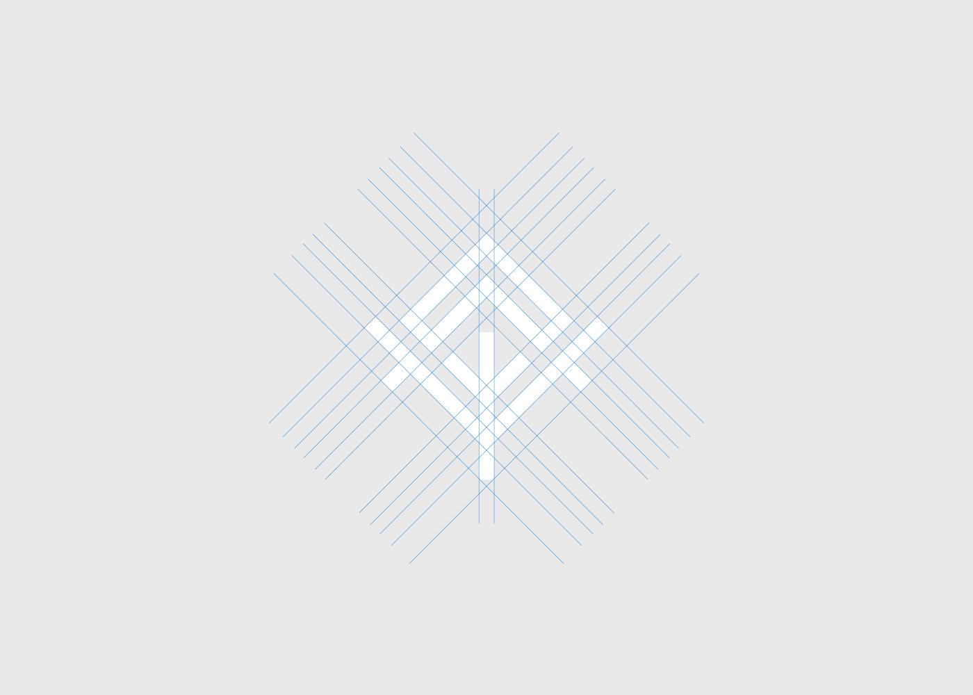 IT branding  modern mythology development pattern tech apps Nature identity