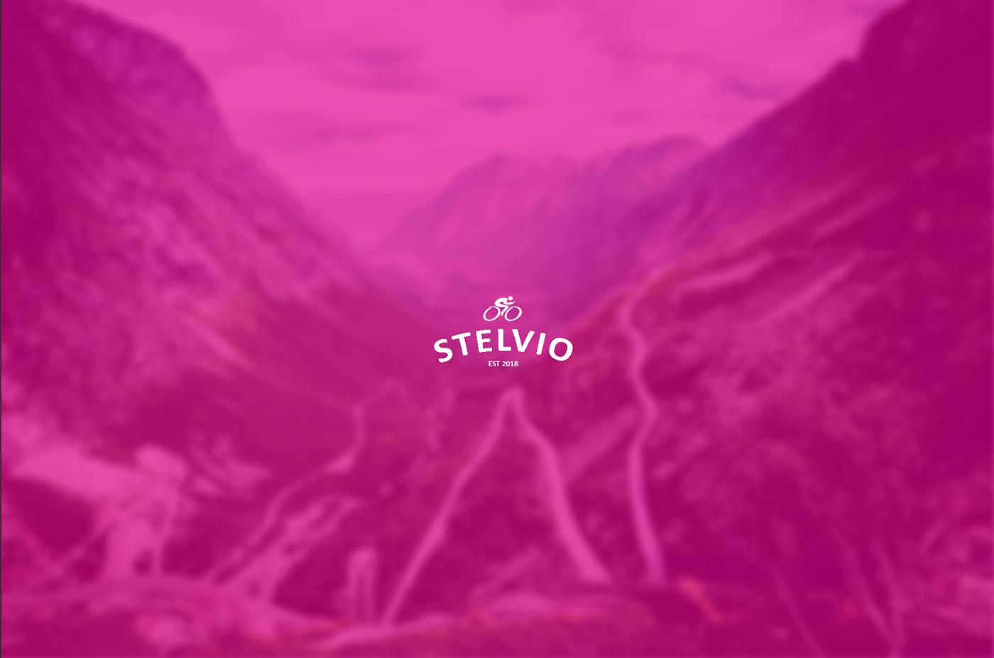Stelvio Brand Identity logo Logo Design Logotype